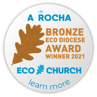 Bronze Eco Diocese Badge