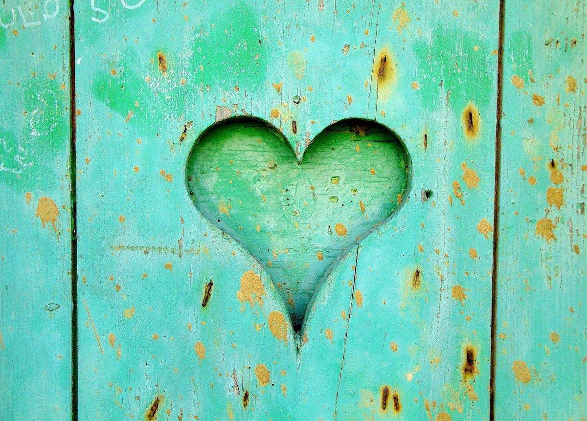 heart-1077724_1920.jpg